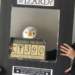 calling all wizards